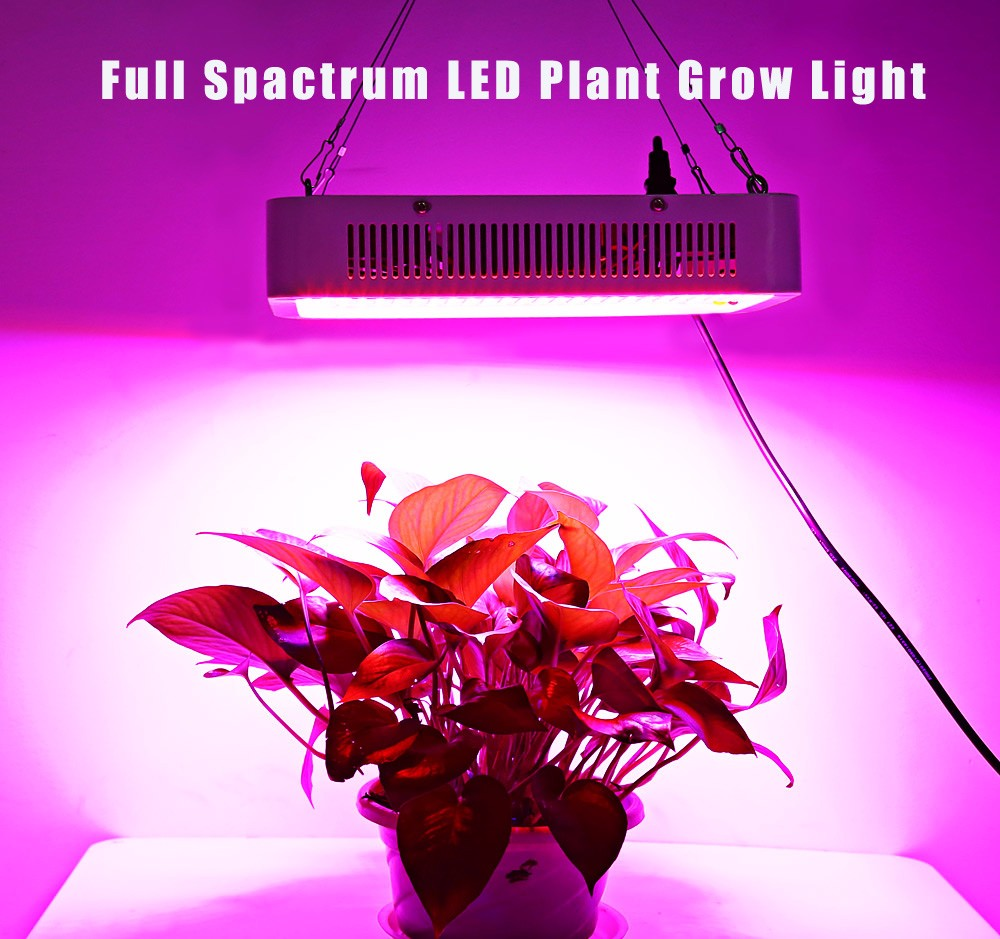 grow and controlled with lights lo production environment res ca conviron press research valoya sna led plant lighting optimised chambers for light