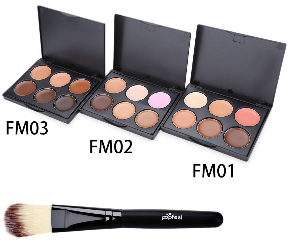 Professional 6 Color Foundation Contour Concealer with Powder Brush- #1