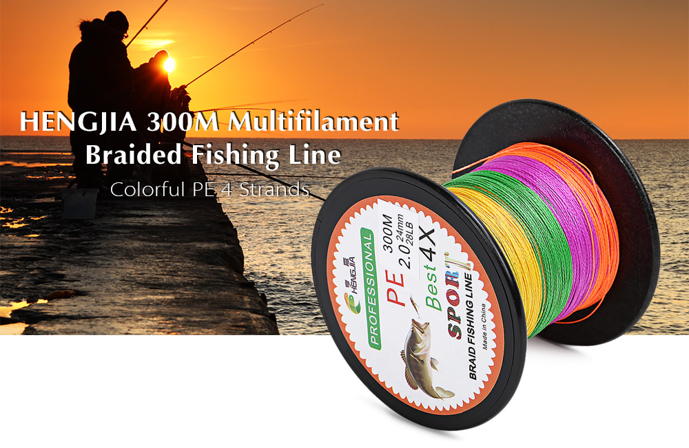 HENGJIA 300M PE 4 Strands 5 Colors Multifilament Braided Fishing Line Angling Accessory