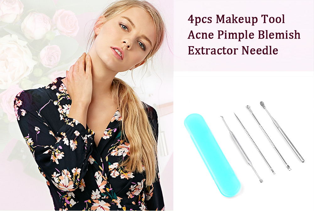 4pcs Skin Care Makeup Tool Acne Pimple Blemish Extractor Needle