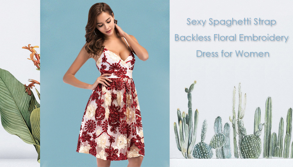 Sexy Spaghetti Strap Backless Floral Embroidery Layered Mesh Zipper Women A-line Dress