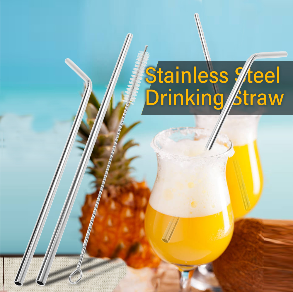 Stainless Steel Drinking Straw with Cleaning Brush- Silver