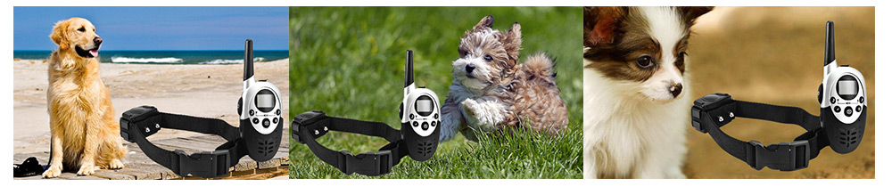 E613 Waterproof 1000m Remote Control Pet Dog Anti Bark Shock Collar