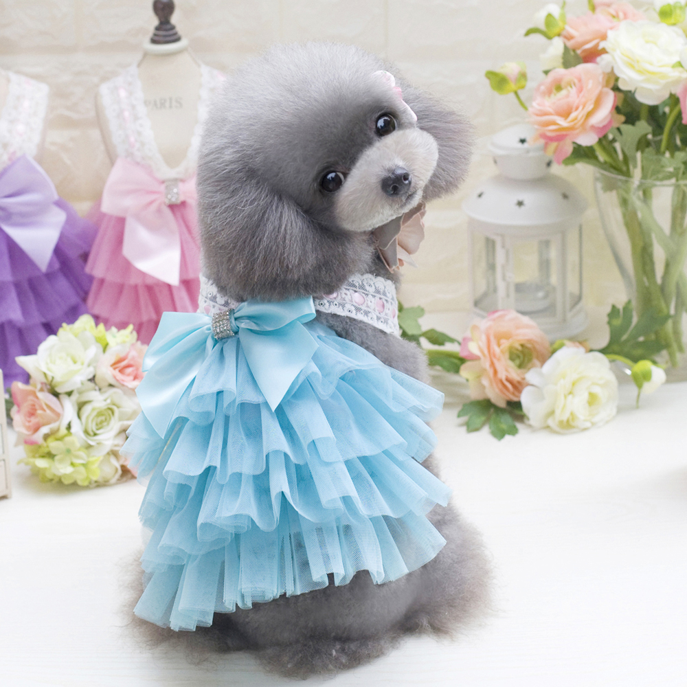 Enchanting Dog Wedding Outfits Component - Womens Dresses & Gowns ...