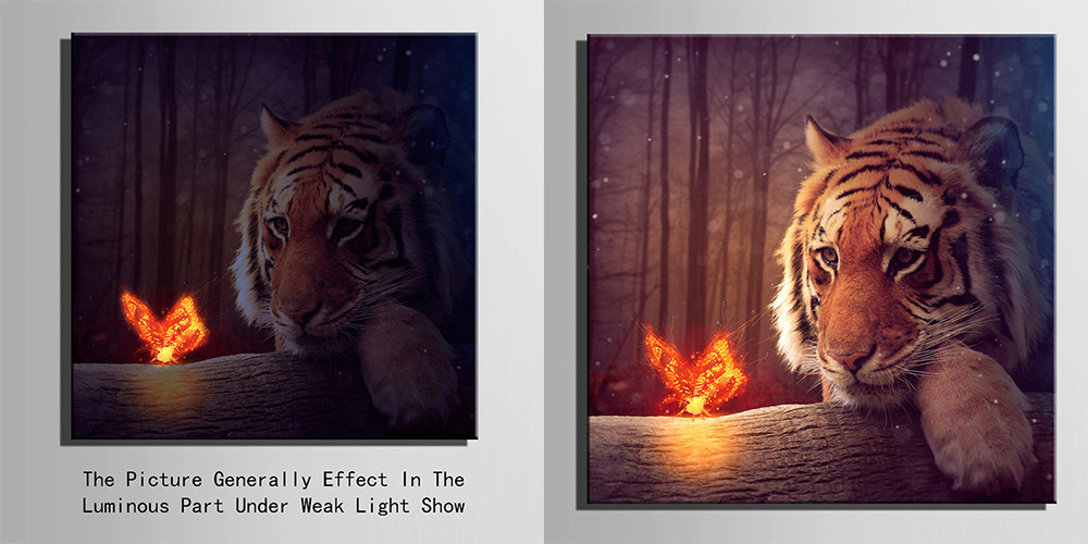 Tiger Animal Wildlife Forest CANVAS WALL ART Box Framed Picture Print Home Decor
