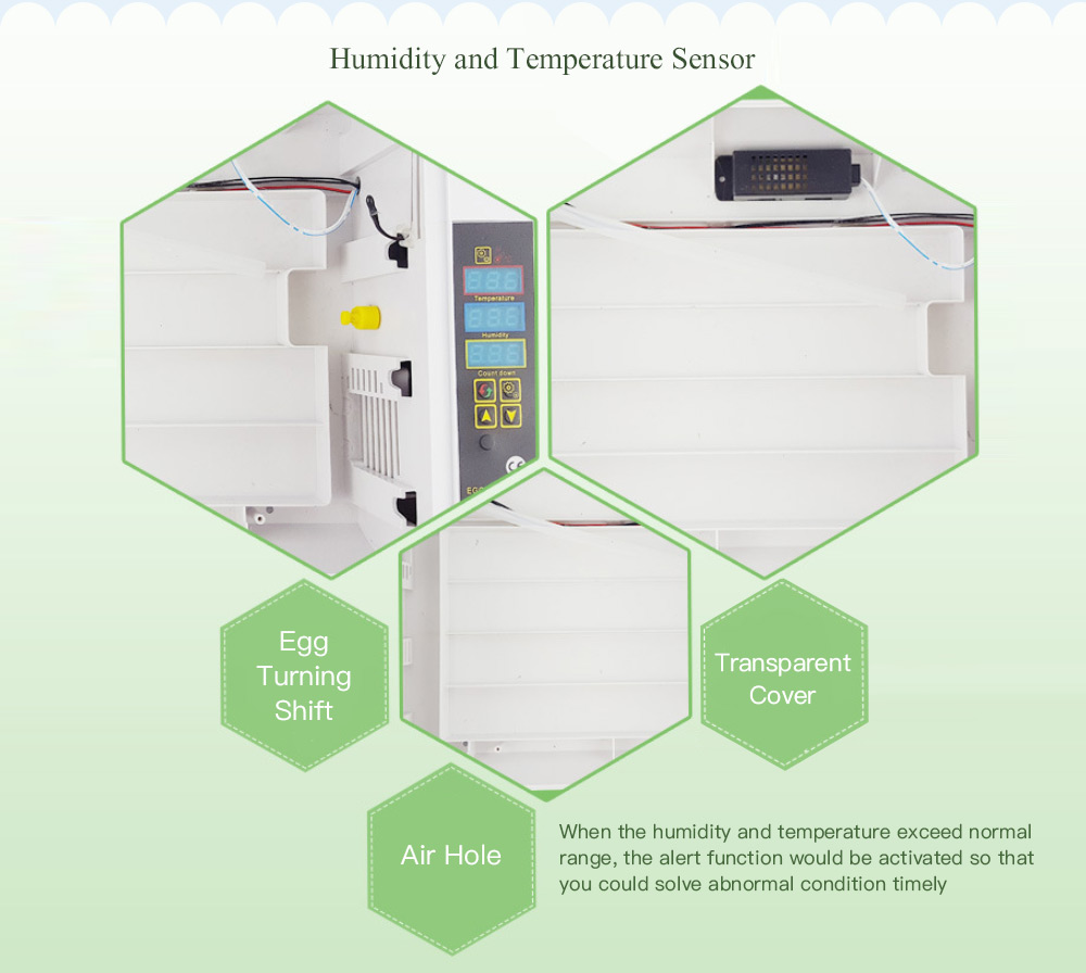 Temperature Humidity Display Poultry Egg Incubator 24 6072 Free Wiring Diagram Transparent Cover Crystal Cream