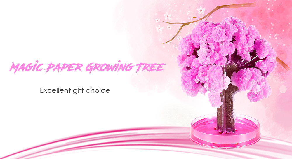 Magic Paper Growing Blossom Tree Decoration Christmas Gift Toy for Children