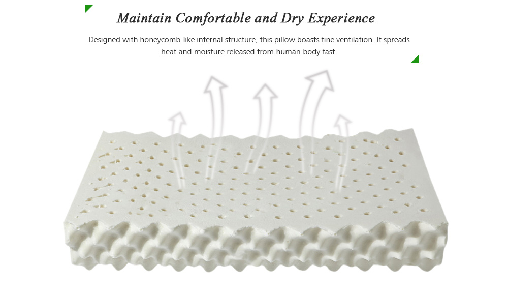 HESSION Natural Soft Latex Massage Pillow - White