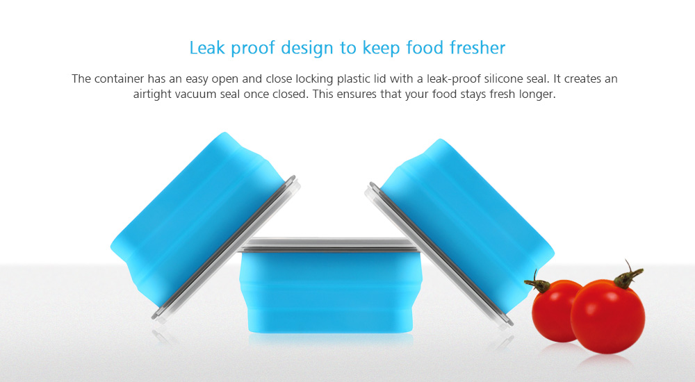 zanmini ZBOX01 Silicone Food Storage Container- Blue