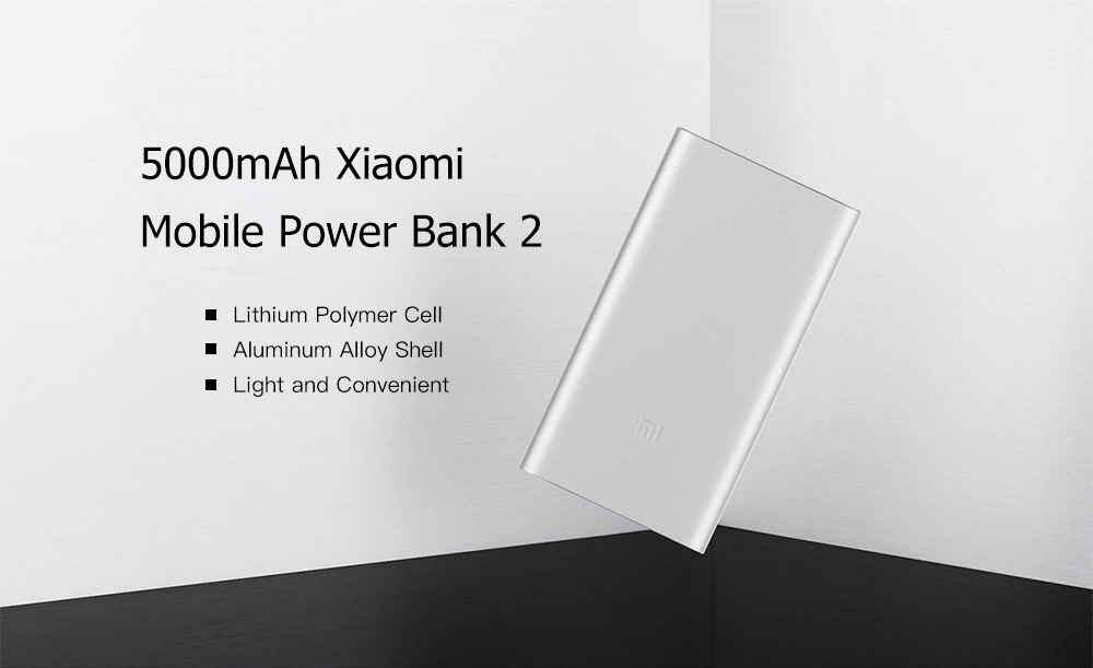 Original Xiaomi PLM10ZM 5000mAh Portable Mobile Power Bank 2- Silver