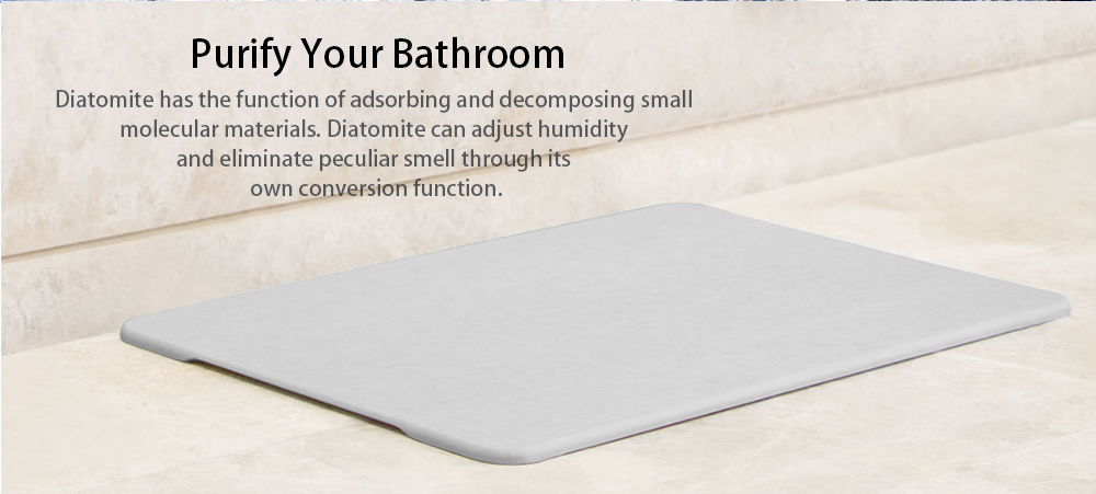Creative Anti-skid Water-absorbing Diatomite Bath Mat- Gray Goose Rectangle Shape