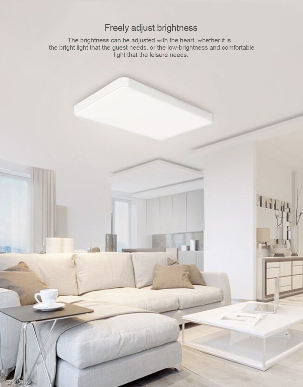 Yeelight Simple LED Ceiling Light Pro for Living Room 220V 90W from Xiaomi Youpin- White gray shell