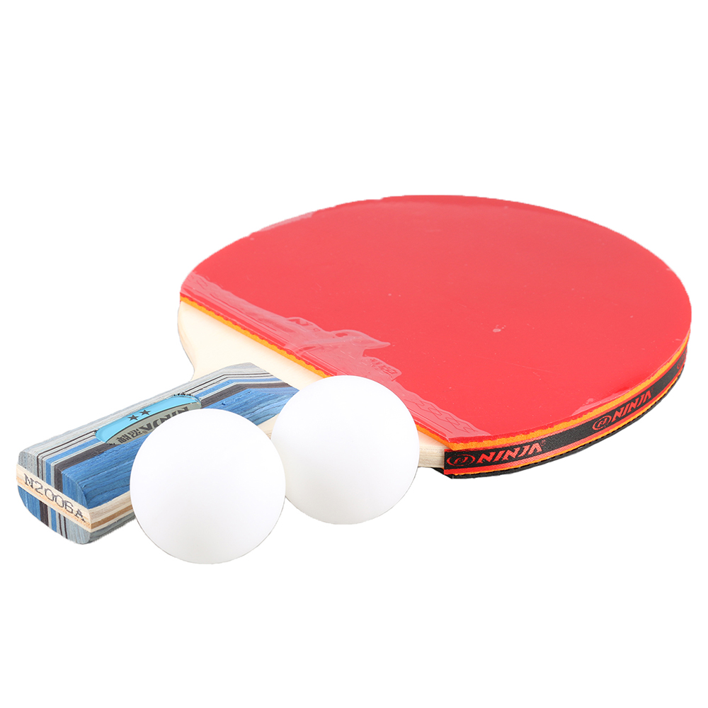 DOBESTS Table Tennis Set with Retractable Net 2 Pro Ping Pong Paddle 6 Professional Game Balls Training Accessories Racket Bat Bundle Kit for Home Indoor or Outdoor