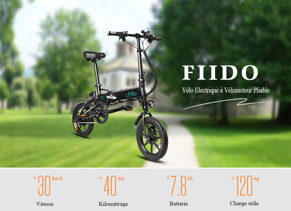 FIIDO D1 Folding Electric Bike Moped Bicycle E bike White Prises Européen / 78Ah entrepôt FR