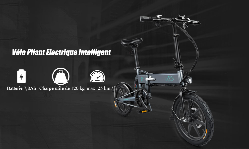 FIIDO D2 Folding Moped Electric Bike E bike Slate Gray entrepôt FR