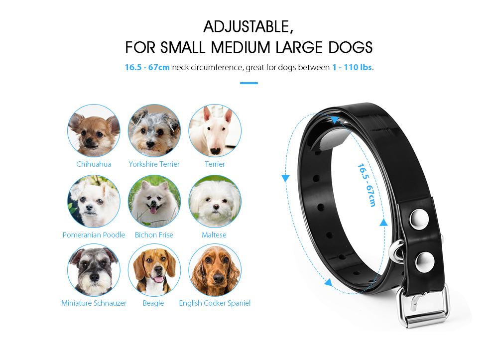MINI AUTO STOP BARK Dog Collar Chihuahua Toy Poodle XS RECHARGEABLE SAFE HUMANE