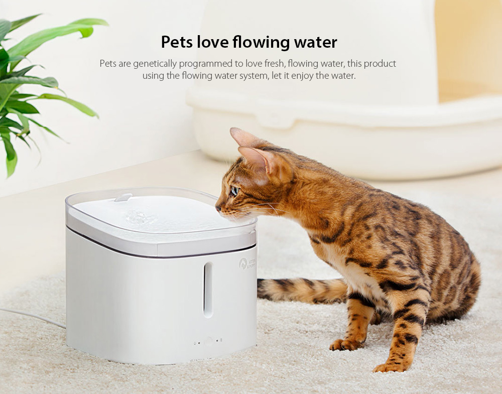 Creative Simple Pet Water Dispenser from Xiaomi Youpin- Milk White