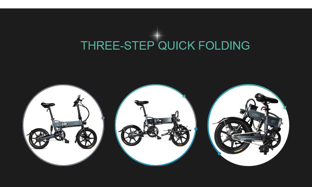 FIIDO D2 Smart Folding Bike Electric Moped Bicycle 7.8Ah Battery / with Double Disc Brakes- Slate Gray