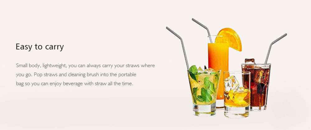 Portable 304 Stainless Steel Straw with Brush 6pcs- Silver