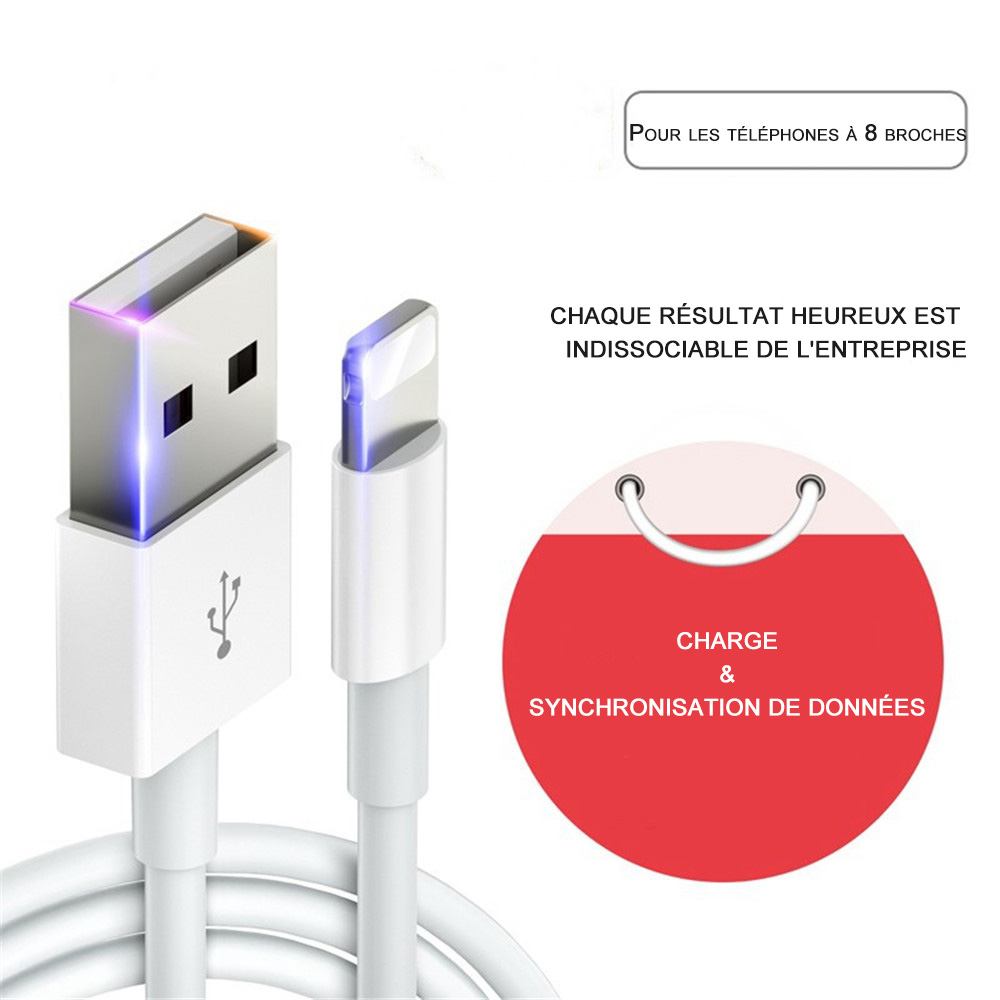 Chargeur iPhone 8 3m, Câble de foudre plat Blue de SWISS QA