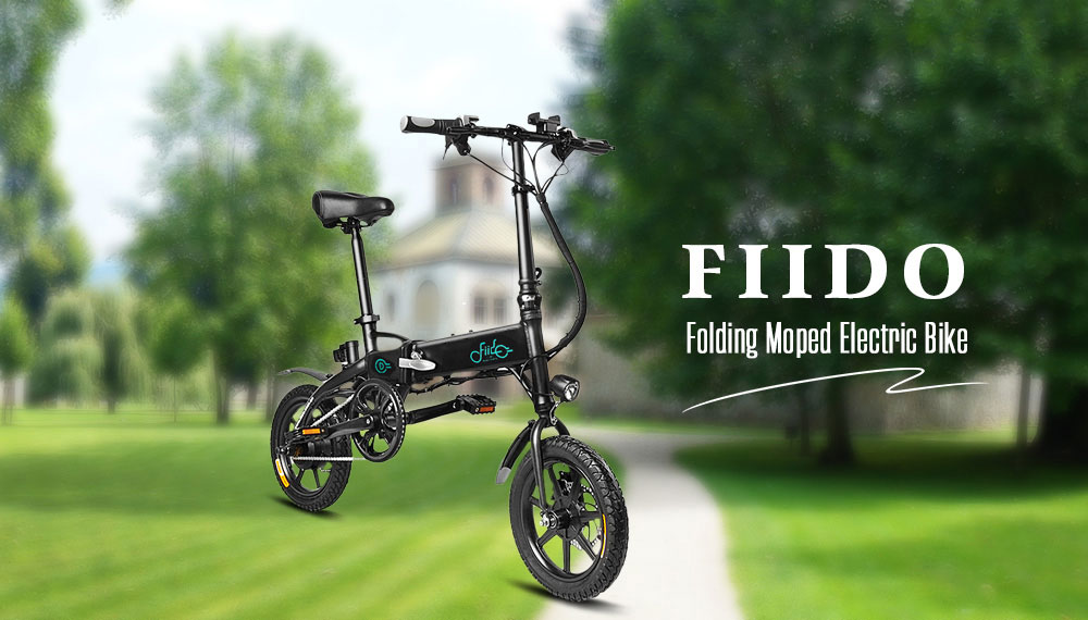 FIIDO D1 Folding Electric Bike Moped Bicycle E bike White Prises Européen / 104Ah entrepôt FR