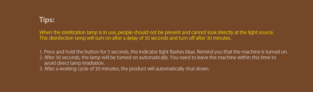 Portable UV Disinfection Lamp tips