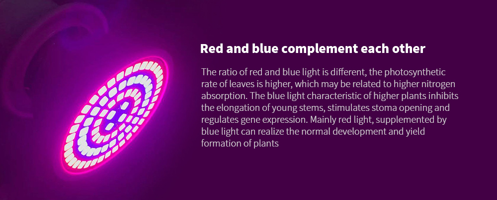 LED Plant Growth Light Bulb Red and blue complement each other
