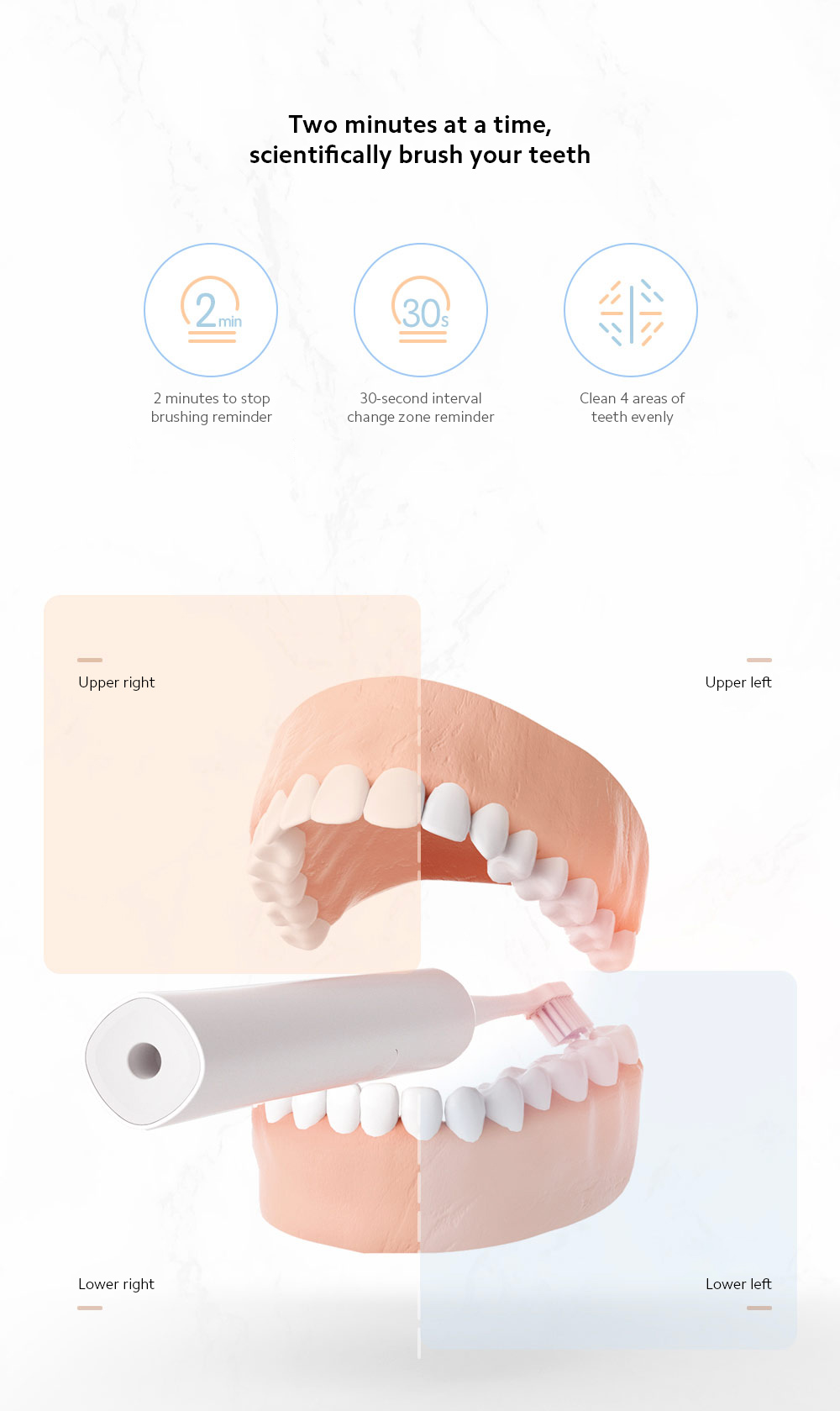 D1-W / D1-P Electric Sonic Toothbrush Two minutes at a time